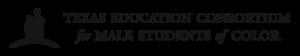 Consortium Logo Horizontal