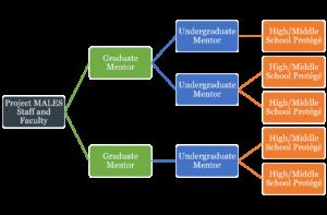 mentor model diagram