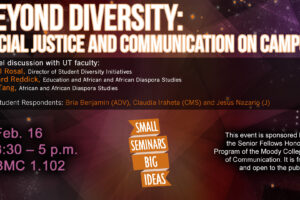 image of Beyond Diversity poster