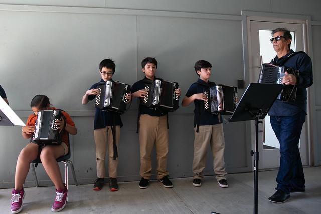 Little Longhorn accordians