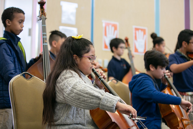 Little Longhorn strings 2
