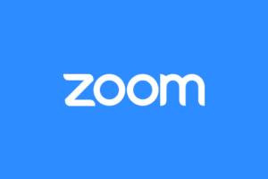 image of zoom logo