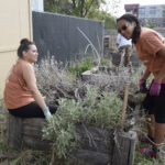 UTES Green Day: Working with New Friends to Improve the School Environment