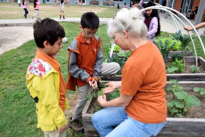 image of two boys and teacher in garden