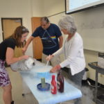 LCSP Professional Development Workshops Prep High School Teachers for the Fall Semester