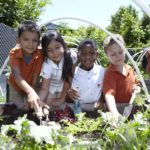 UTES Teacher Rebecca Vore Champions East Austin Garden Alliance